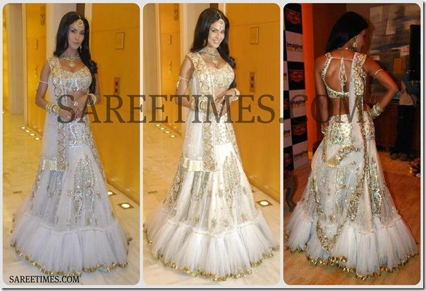 Veena_Malik_Lehenga_Style_Saree