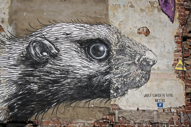 Roa&#39;s Rat