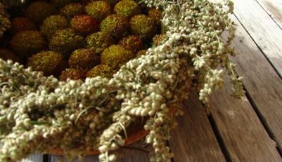 Tischschmuck aus Beifußkranz mit Samenständen der Kokardenblume