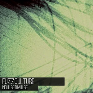 FUZZCULTURE_CD.JPG