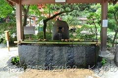 Glória Ishizaka - Kamigamo Shrine - Kyoto - 11 a