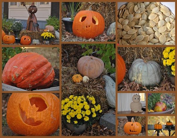 2011-10-30 Oct 11