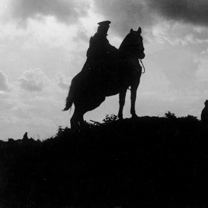 A Primeira Guerra Mundial - os animais no campo de batalha