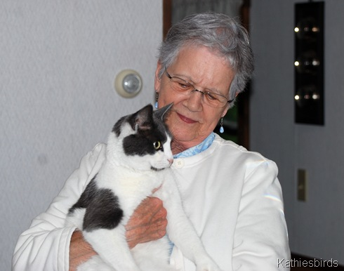 4. grammy and cat-kab