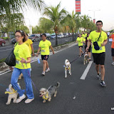 Pet Express Doggie Run 2012 Philippines. Jpg (77).JPG