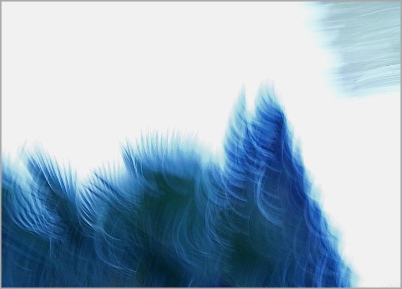 blaupalme