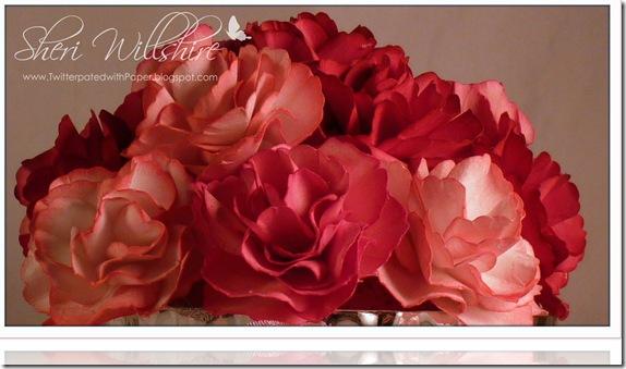 Carnations-1 copy