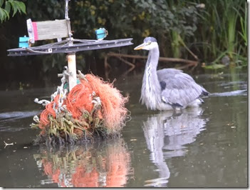 heron with bike sculpture