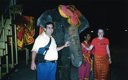 202. cu elefanti in Phuket.jpg