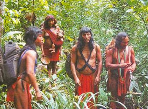 Área indígena Waiãpi, Laranjal do Jari - Amapà