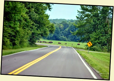 02b - Entered Tennessee and see the  Bison Range