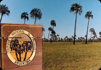 el palmar, Entre Rios, national park