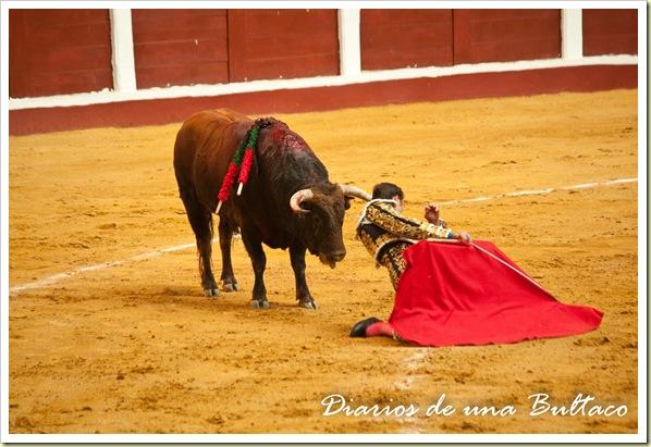 Toros_León-30