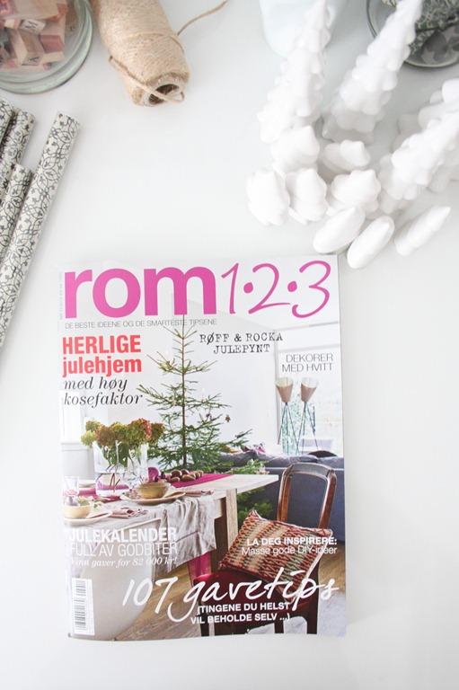 rom123 (3)