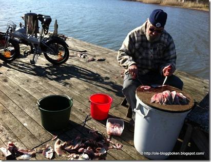 Fiskförädling1