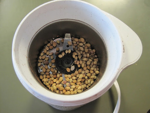Coriander seeds in spice grinder.