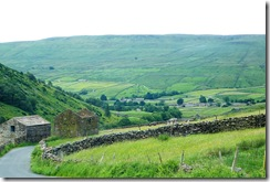 swaledale upper view