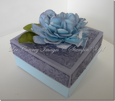 flower box white background 006
