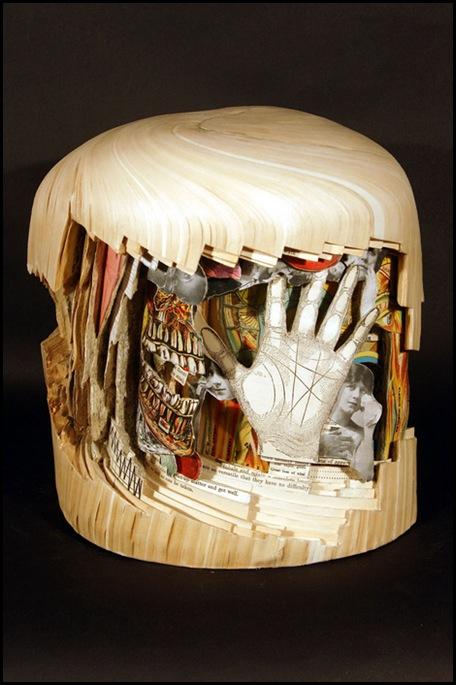 Brian Dettmer sculpteur de livres (31)