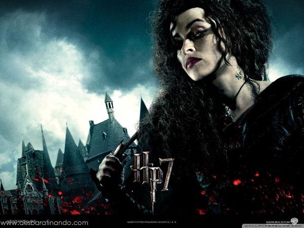 harry-potter-and-the-deathly-hallows-wallpapers-desbaratinando-reliqueas-da-morte (25)