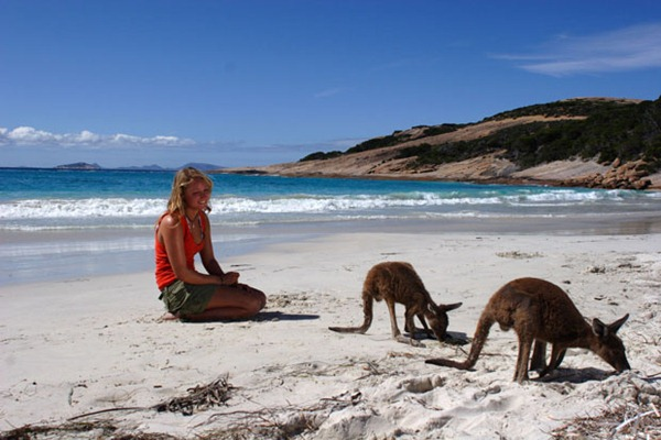 SHARE A BEACH WITH A KANGAROO
