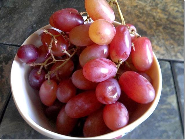 grapes-public-domain-pictures-1 (2290)