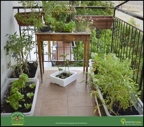 fai l'orto sul balcone
