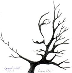 Portret vegetal - Copacul portret