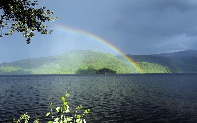Rainbow after the rain.jpg