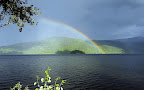 A beautiful rainbow appears in the bright sky after the rain.