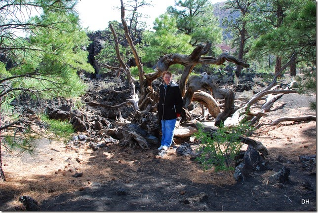 05-06-14 C Sunset Crater NM (33)