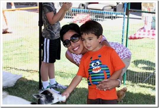 petting zoo IMG_9521