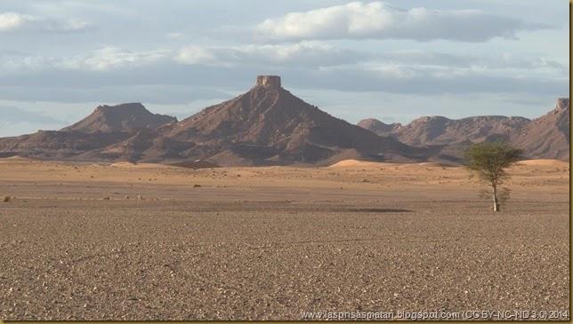 Desierto-355