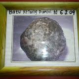 写真5: IV氏の雑貨店の壁に掛けられていた、ヤマアラシの胃石の記念写真 (撮影:奥野 克巳)