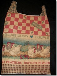 Sandy's bag (3)