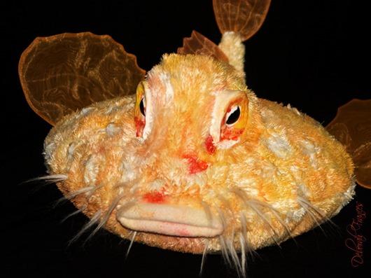 morskoy-netopyir-3