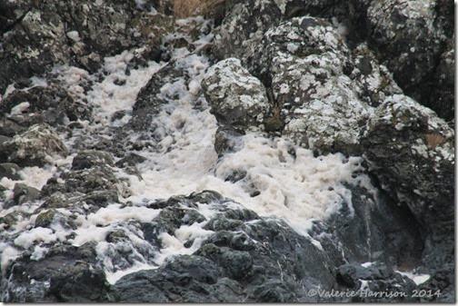 7-sea-foam