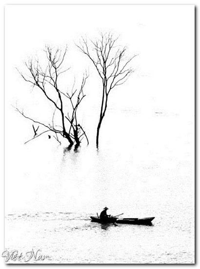 Việt Nam qua những tác phẩm ảnh đoạt giải quốc tế