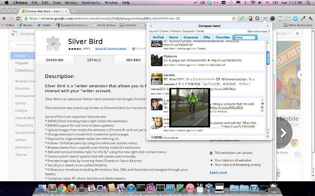 Sliver Bird.jpg