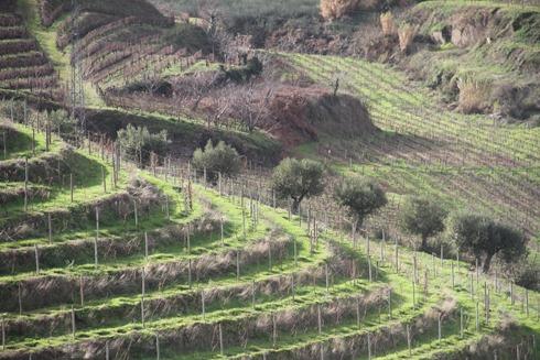 Resa i Portugal 2012 134