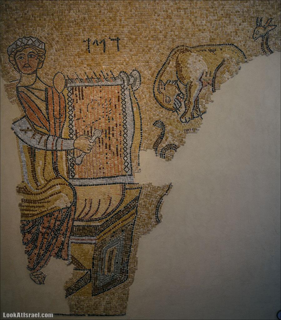 Мозаики от «Доброго самаритянина» (israel  путешествия иудея и самария и интересно и полезно выставки музеи фестивали  20130215 good samaritan mosaic 019 5D3 8382)