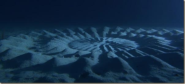 Crop Circles sous-marins