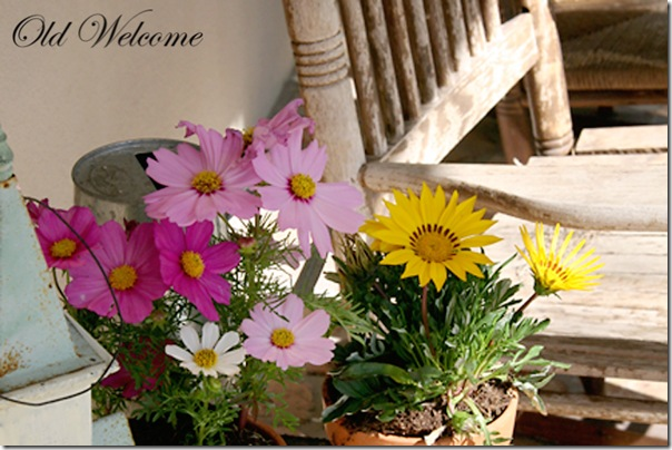 potted flowers old rocker front porch old welcome 2