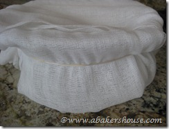 cheesecloth on bowl