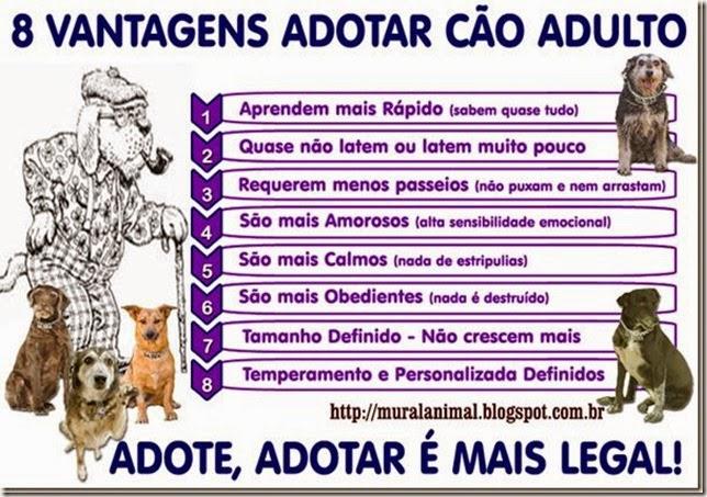adote_adotarlegal