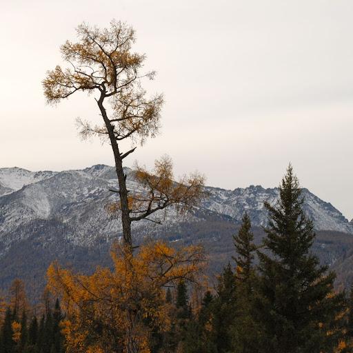 Xinjiang, Baihaba - Montagnes