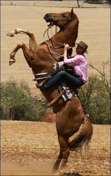 sarah-grieve-horse-rear