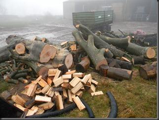 feb 6. 12 logging 001