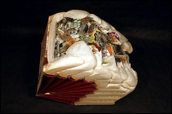 Brian Dettmer sculpteur de livres (25)