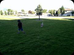 7-21-2011 fetch (1)